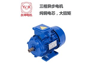 Three phase asynchronous motor is divided into squirrel cage motor and winding motor