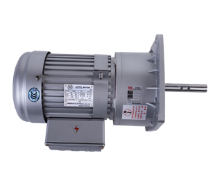 Vertical gear reducer Silver