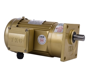 Vertical gear reducer single phase
