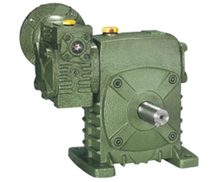 Wpeds worm gear reducer